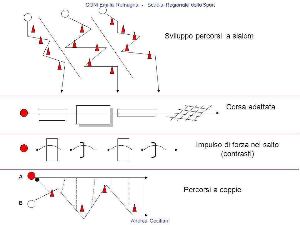 A B Sviluppo percorsi a slalom Corsa adattata Impulso di forza nel salto (contrasti) Percorsi a coppie CONI Emilia Romagna - Scuola Regionale dello Sp