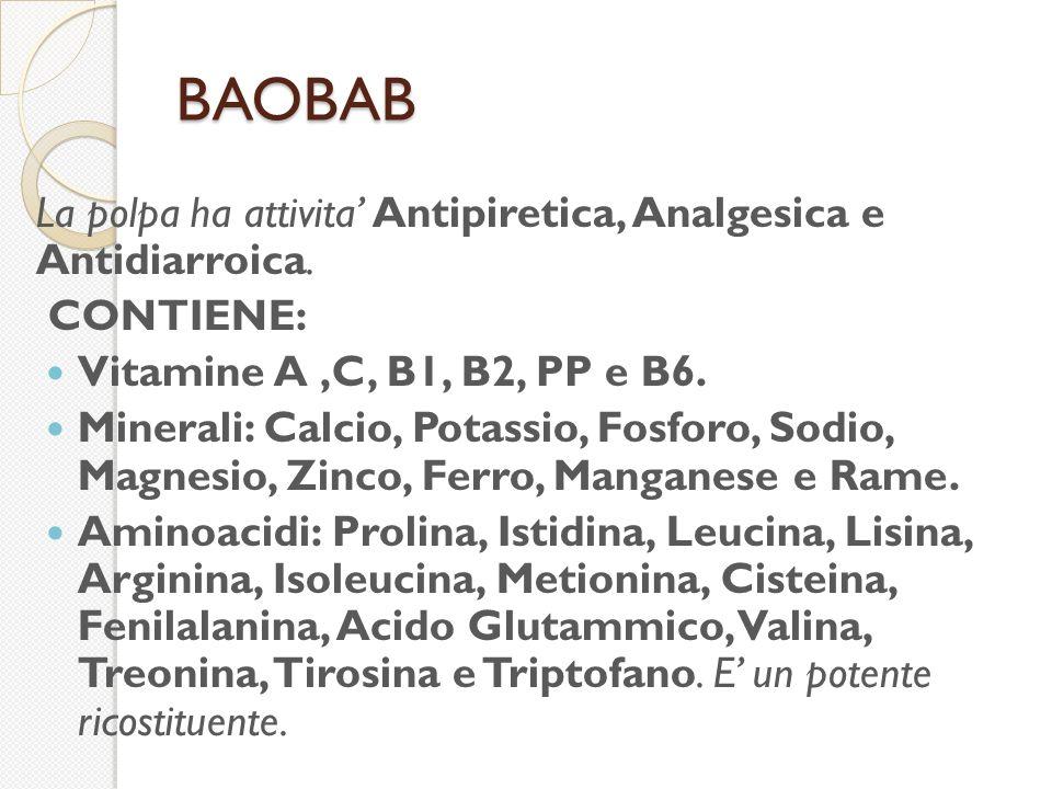 BAOBAB La polpa ha attivita Antipiretica, Analgesica e Antidiarroica.