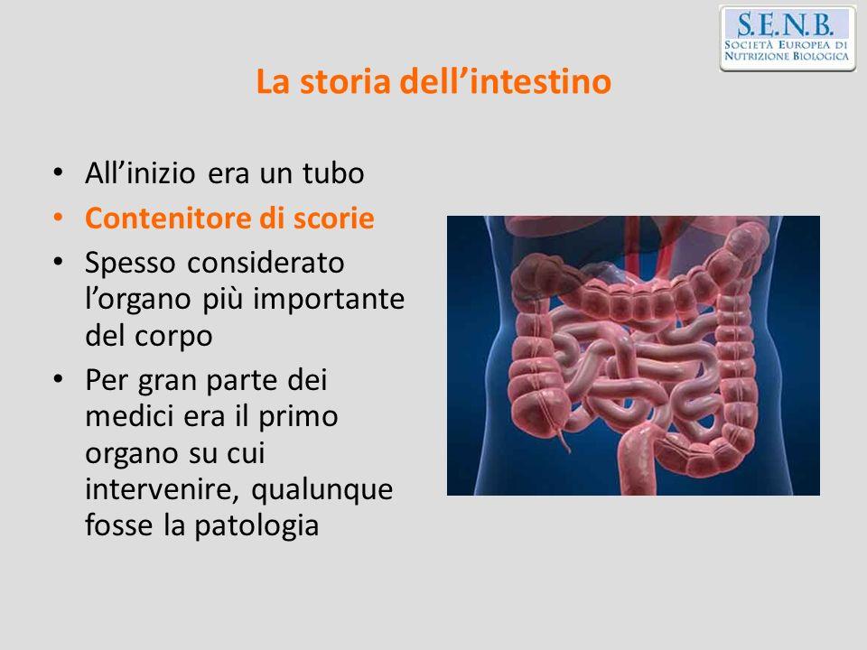 Sede del tumore VegetaliFrutta Carni rosse Carni trasformate SaleAlcool Bocca/laringe/faringe --- Esofago --- Stomaco -- Colon/retto Seno -- Polmone --- Prostata - --- WCRF.1997 Adapted by Riboli et al.