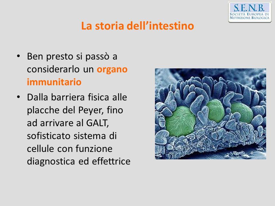 Buon cibo per buoni batteri: simbiosi e immunità Dott.