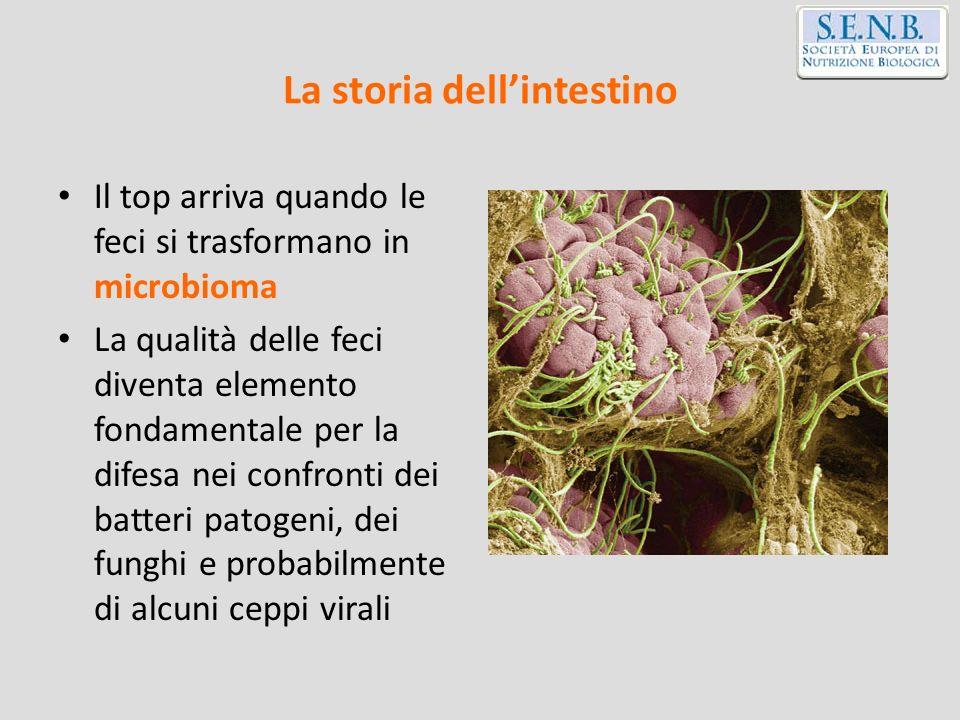 Reset batterico: colostro 1.STIMOLARE il Sistema Immunitario Associato alle Mucose 2.PRESERVARE lintegrità istologica della mucosa digerente 3.FAVORIRE leubiosi intestinale