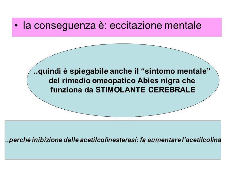 la conseguenza è: eccitazione mentale..quindi è spiegabile anche il sintomo mentale del rimedio omeopatico Abies nigra che funziona da STIMOLANTE CERE