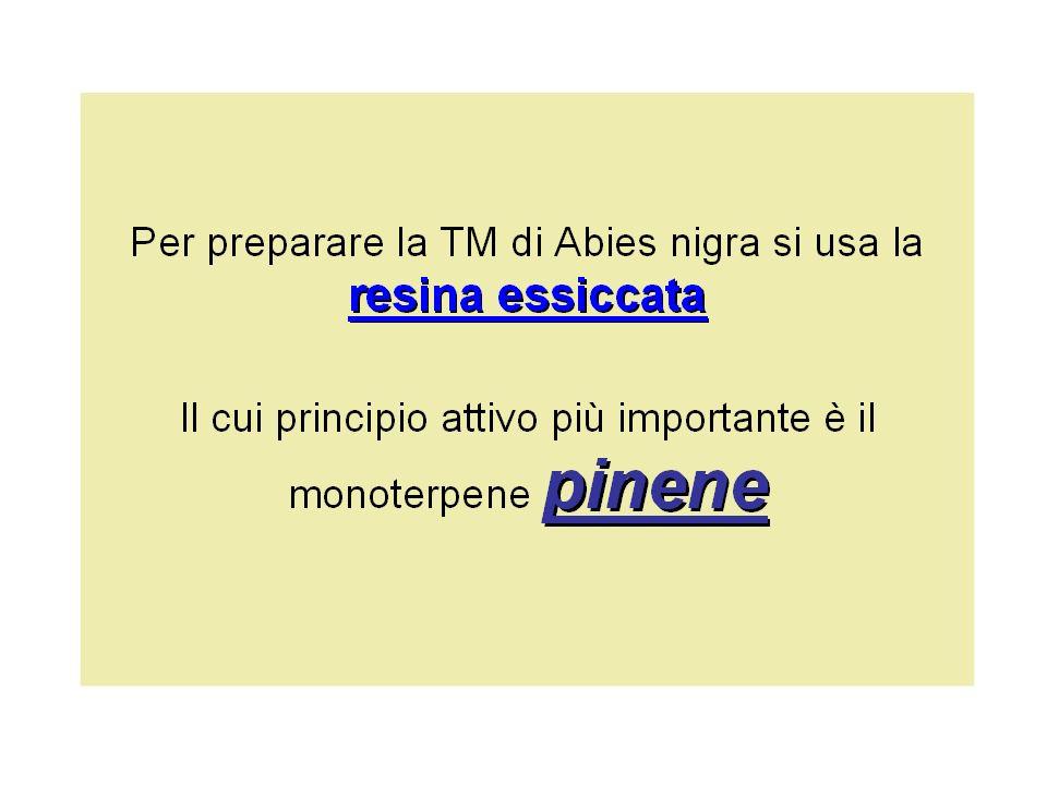 alfa-pinene alfa-pinene possiede attività spasmolitiche e miorilassanti inibizione dei canali del calcio attraverso inibizione dei canali del calcio