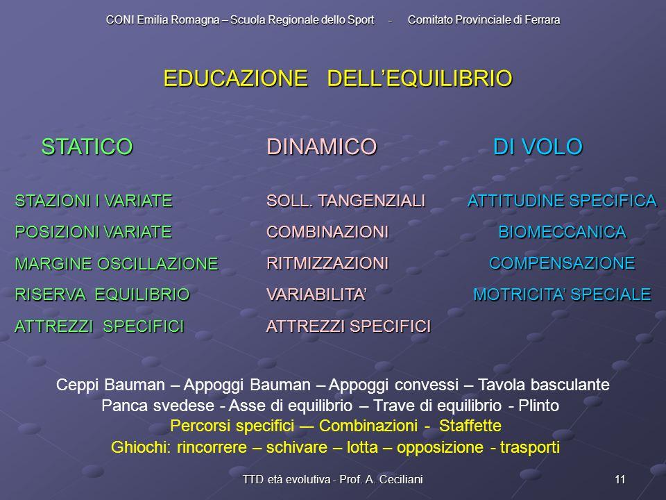 11TTD età evolutiva - Prof. A. Ceciliani EDUCAZIONE DELLEQUILIBRIO STATICO STAZIONI I VARIATE POSIZIONI VARIATE MARGINE OSCILLAZIONE RISERVA EQUILIBRI