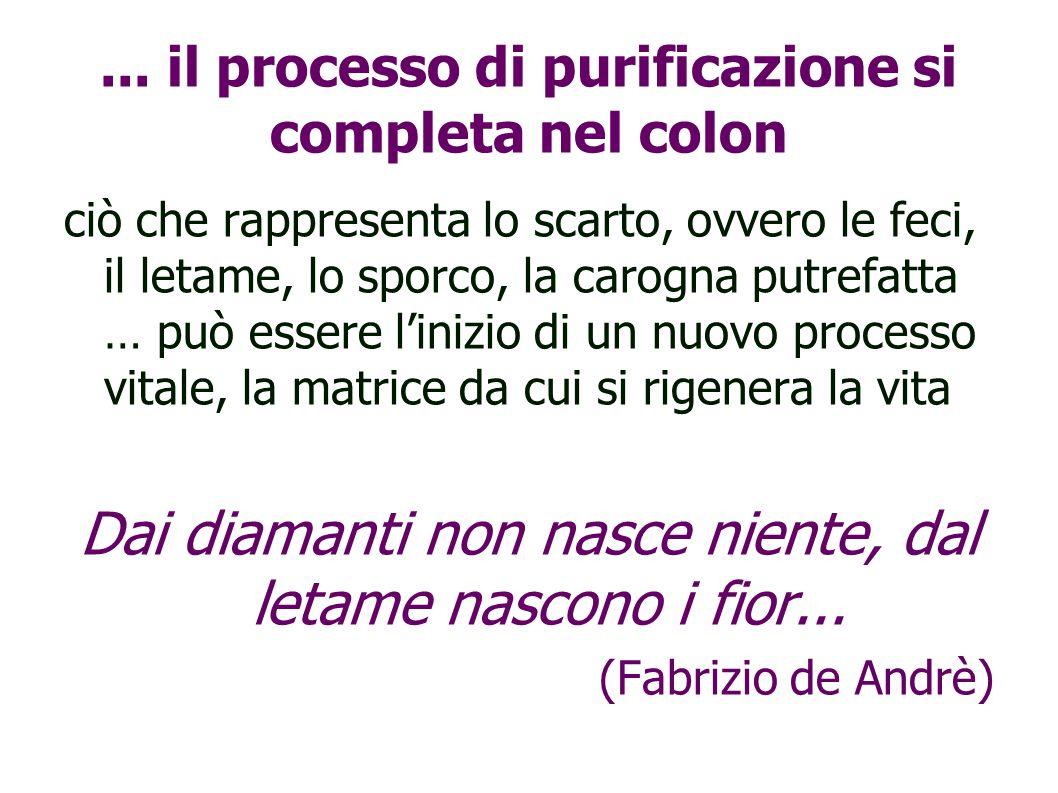 ... il processo di purificazione si completa nel colon ciò che rappresenta lo scarto, ovvero le feci, il letame, lo sporco, la carogna putrefatta … pu