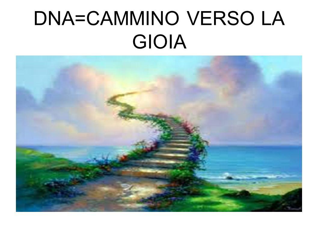 DNA=CAMMINO VERSO LA GIOIA