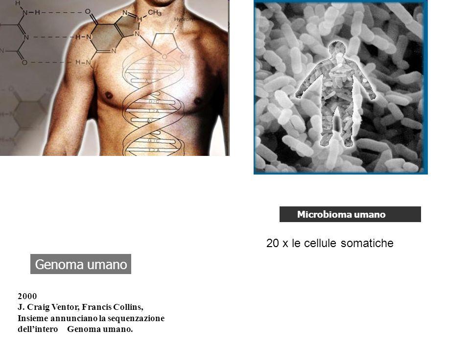 Genoma umano 2000 J. Craig Ventor, Francis Collins, Insieme annunciano la sequenzazione dellintero Genoma umano. Microbioma umano 20 x le cellule soma