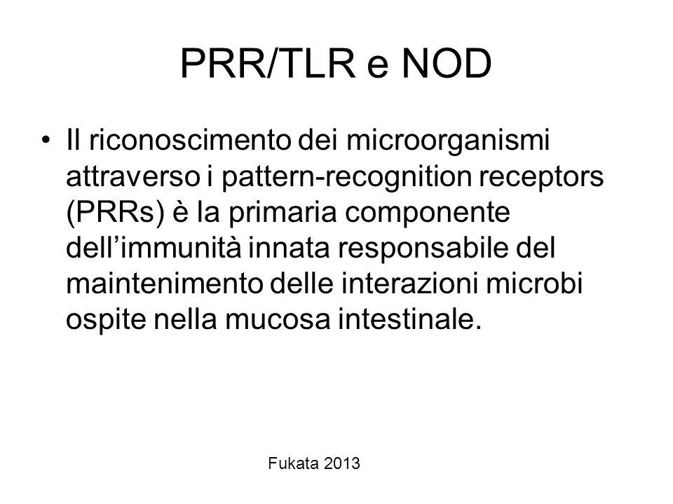PRR/TLR e NOD Il riconoscimento dei microorganismi attraverso i pattern-recognition receptors (PRRs) è la primaria componente dellimmunità innata resp