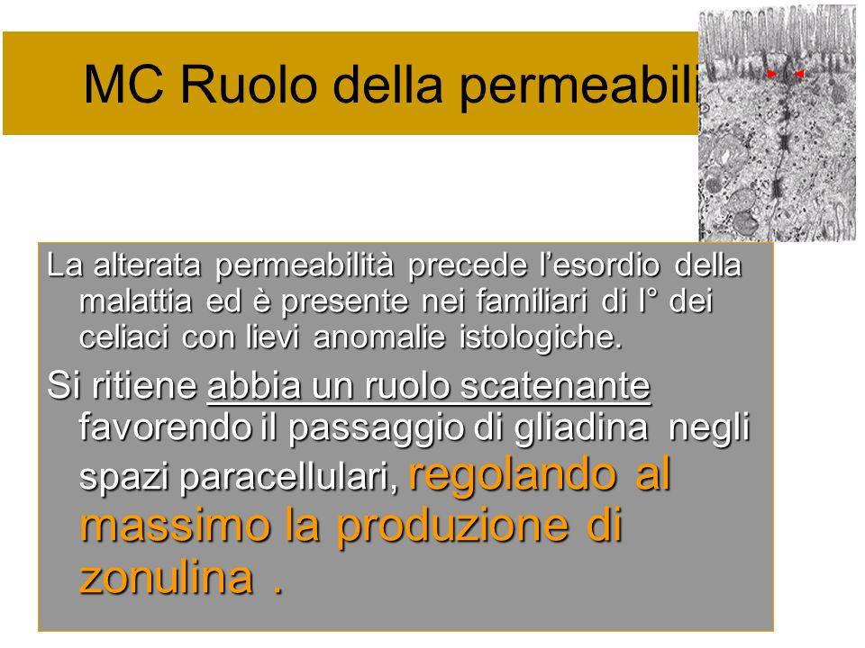 MC Ruolo della permeabilità La alterata permeabilità precede lesordio della malattia ed è presente nei familiari di I° dei celiaci con lievi anomalie