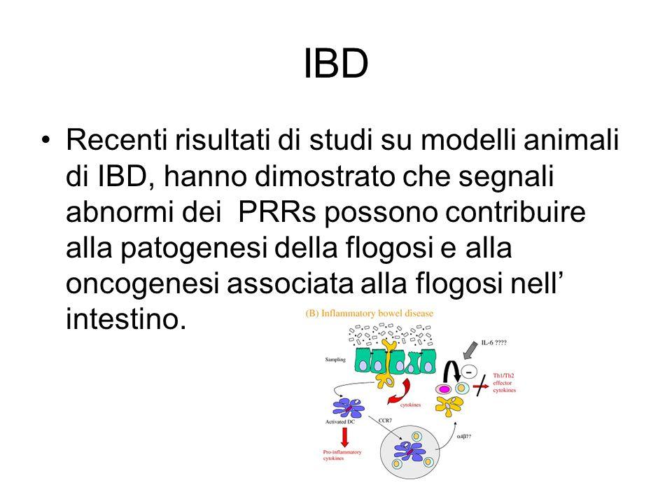 IBD Recenti risultati di studi su modelli animali di IBD, hanno dimostrato che segnali abnormi dei PRRs possono contribuire alla patogenesi della flog