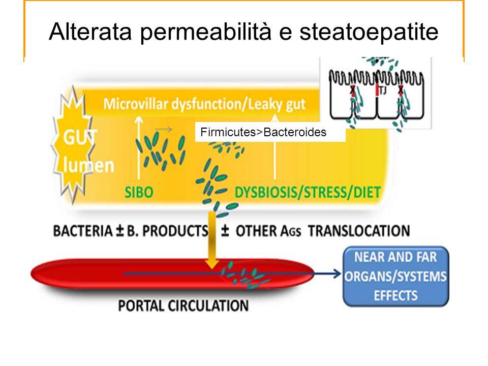 Alterata permeabilità e steatoepatite Firmicutes>Bacteroides