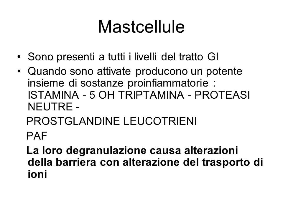 Mastcellule Sono presenti a tutti i livelli del tratto GI Quando sono attivate producono un potente insieme di sostanze proinfiammatorie : ISTAMINA -