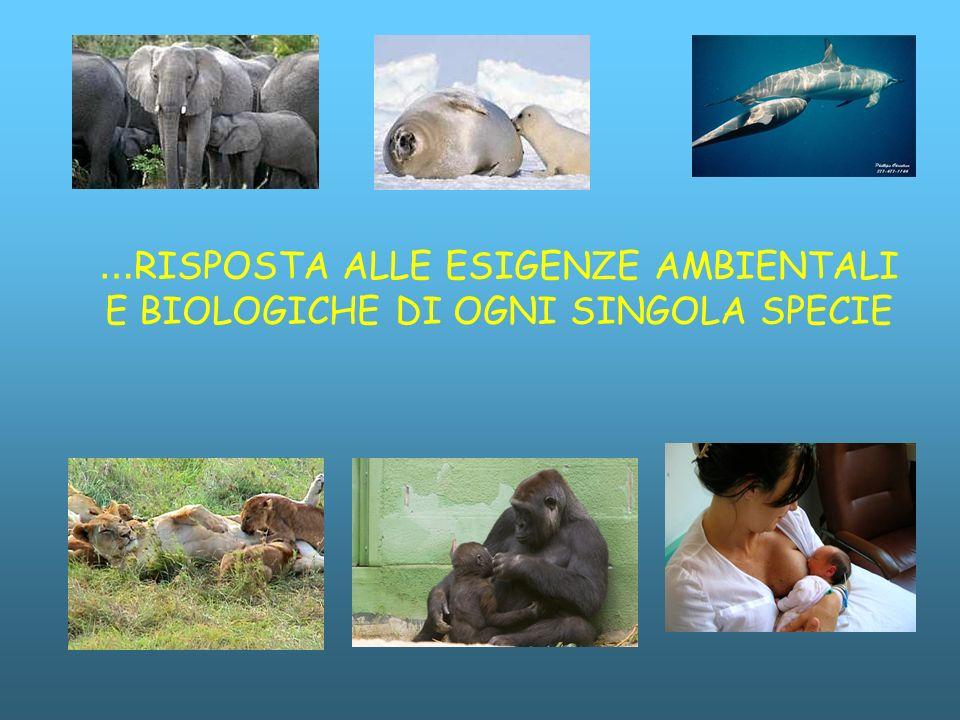 … RISPOSTA ALLE ESIGENZE AMBIENTALI E BIOLOGICHE DI OGNI SINGOLA SPECIE