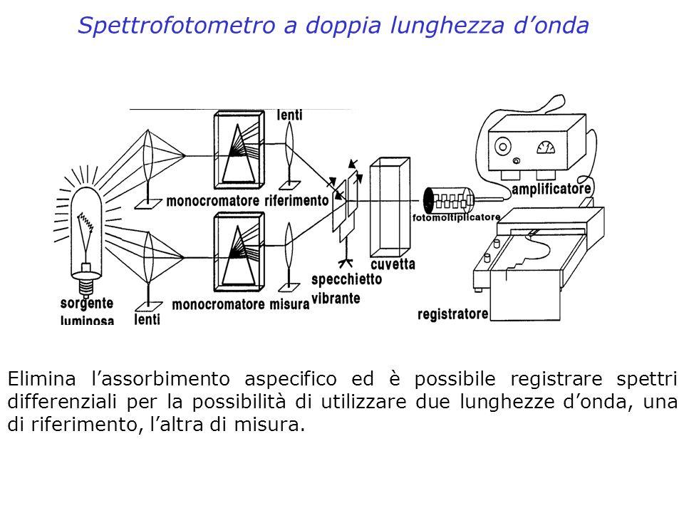 Spettrofotometro a doppia lunghezza donda Elimina lassorbimento aspecifico ed è possibile registrare spettri differenziali per la possibilità di utili
