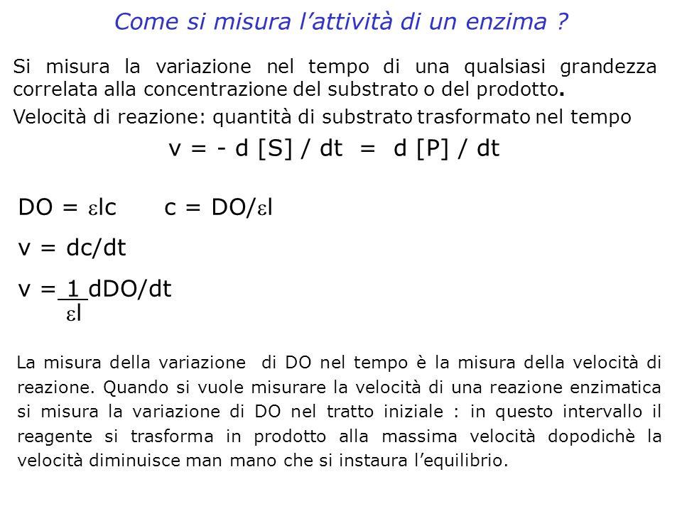 Come si misura lattività di un enzima ? La misura della variazione di DO nel tempo è la misura della velocità di reazione. Quando si vuole misurare la