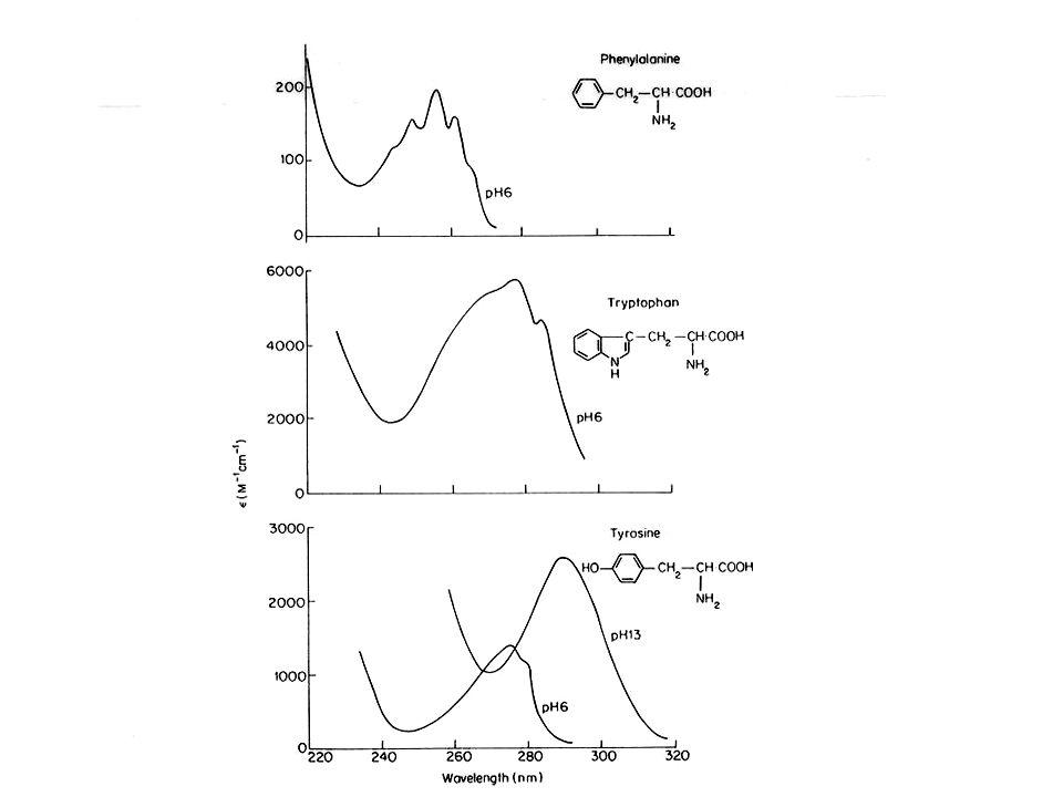 Analisi qualitativa: spettro di assorbimento DEF: curva ottenuta congiungendo i valori di assorbimento presi in funzione della lunghezza donda in un certo intervallo di lunghezze donda.
