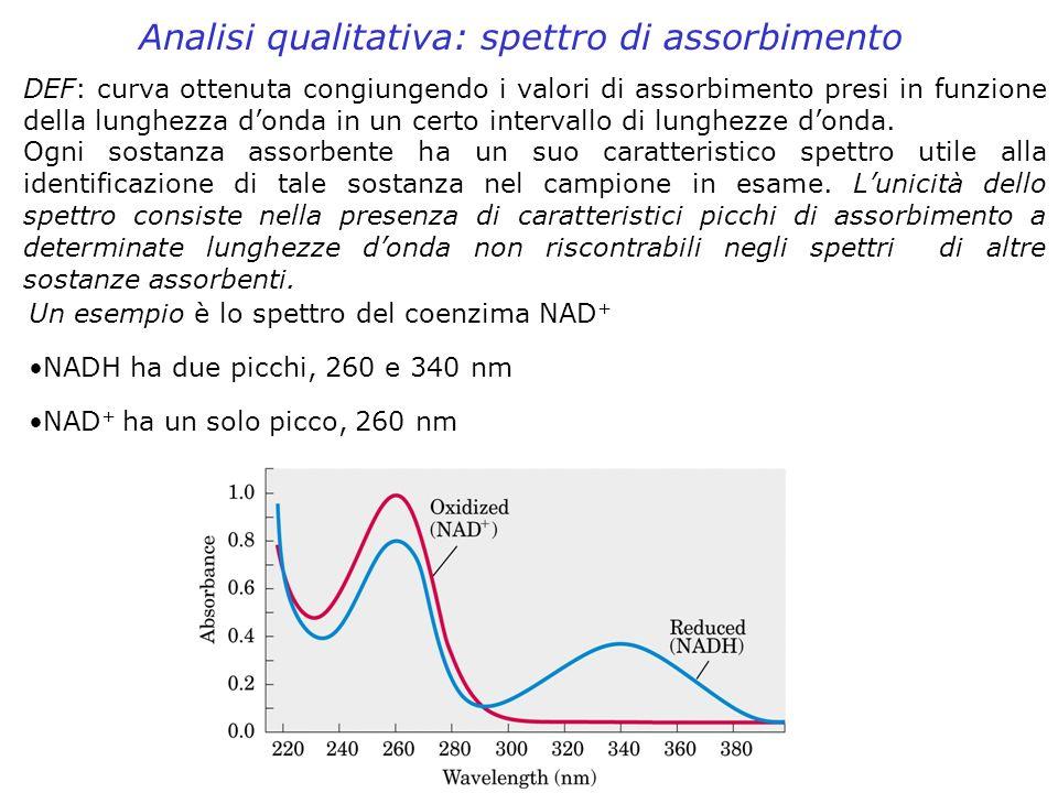 Analisi qualitativa: spettro di assorbimento DEF: curva ottenuta congiungendo i valori di assorbimento presi in funzione della lunghezza donda in un c