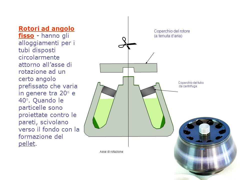 Coperchio del rotore (a tenuta daria) Coperchio del tubo da centrifuga Asse di rotazione Rotori ad angolo fisso - hanno gli alloggiamenti per i tubi disposti circolarmente attorno allasse di rotazione ad un certo angolo prefissato che varia in genere tra 20° e 40°.