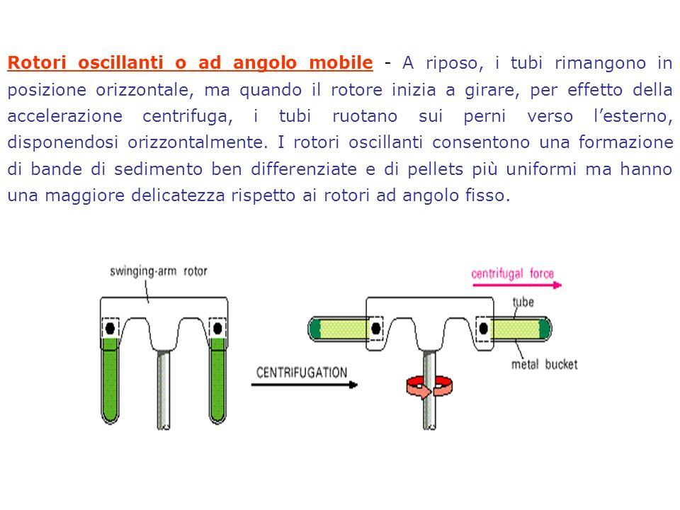 In questo modo si formano lunghe catene di acrilammide tenute insieme tra loro da legami crociati derivanti dallinserzione occasionale allinterno della catena di molecole di bis-acrilammide.