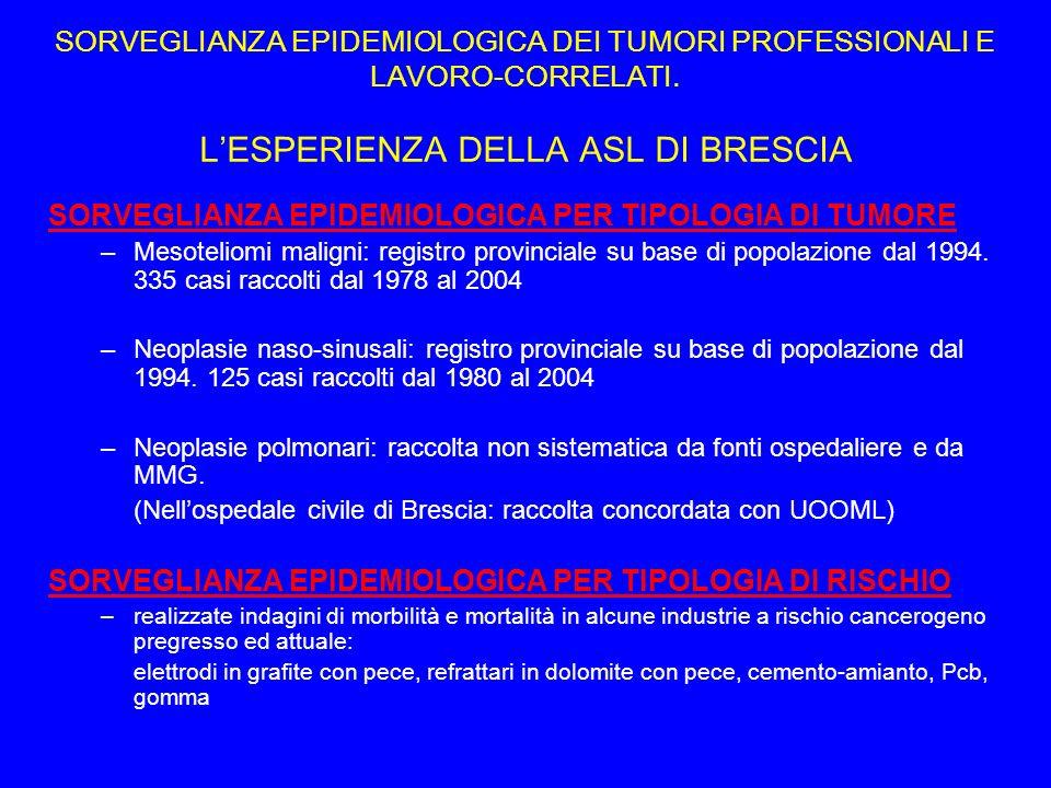 Progetto OCCAM nella realtà di Brescia 2005.