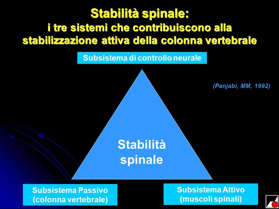 Stabilità spinale: i tre sistemi che contribuiscono alla stabilizzazione attiva della colonna vertebrale Stabilità spinale Subsistema di controllo neu