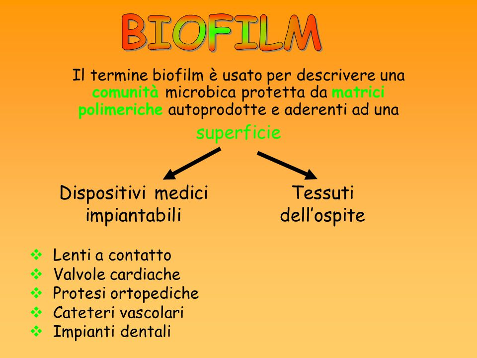 Il termine biofilm è usato per descrivere una comunità microbica protetta da matrici polimeriche autoprodotte e aderenti ad una superficie Dispositivi medici impiantabili Tessuti dellospite Lenti a contatto Valvole cardiache Protesi ortopediche Cateteri vascolari Impianti dentali