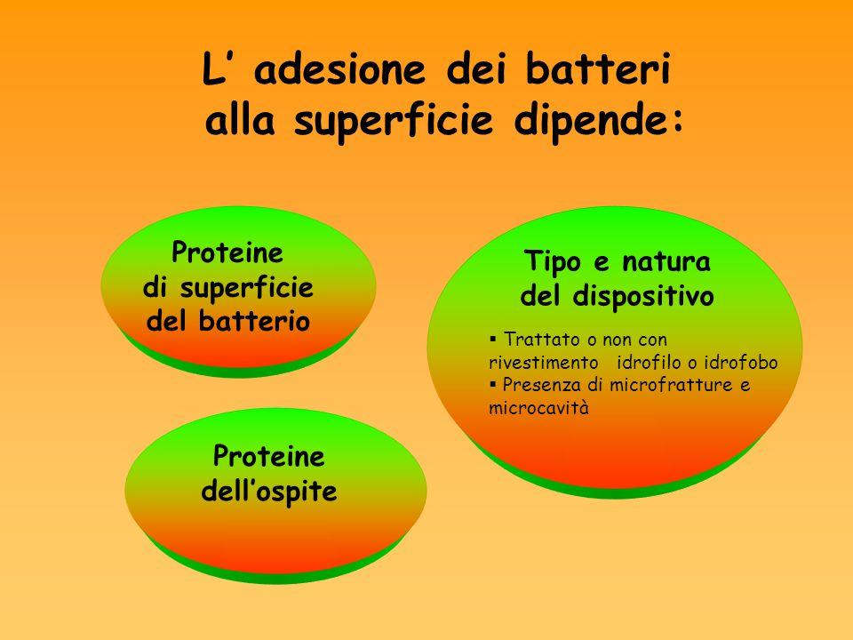 L adesione dei batteri alla superficie dipende: Proteine di superficie del batterio Tipo e natura del dispositivo Trattato o non con rivestimento idro