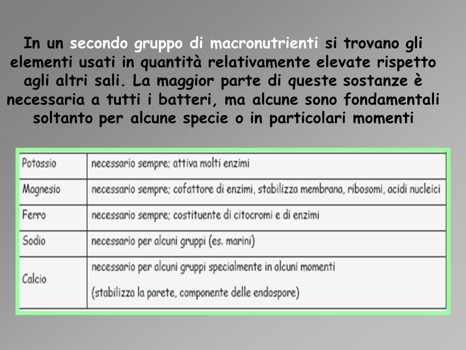 In un secondo gruppo di macronutrienti si trovano gli elementi usati in quantità relativamente elevate rispetto agli altri sali. La maggior parte di q