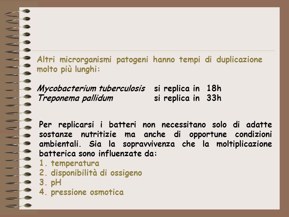 TEMPERATURA Le differenti specie batteriche presentano differenti temperature di crescita.