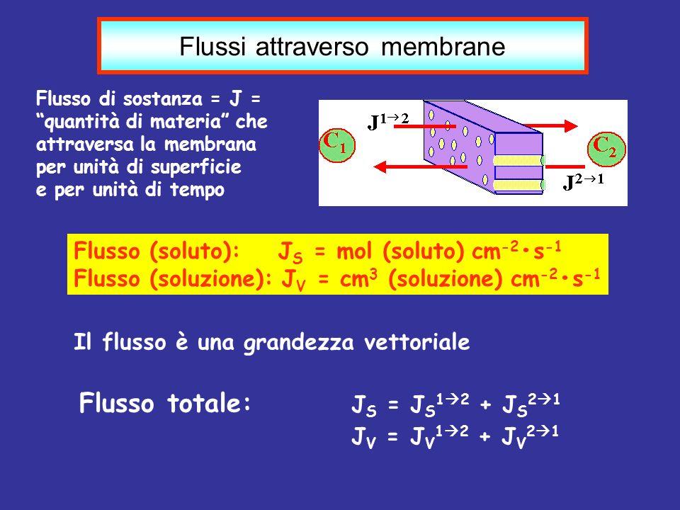 Il flusso è una grandezza vettoriale Flusso totale: J S = J S 1 2 + J S 2 1 J V = J V 1 2 + J V 2 1 Flussi attraverso membrane Flusso di sostanza = J
