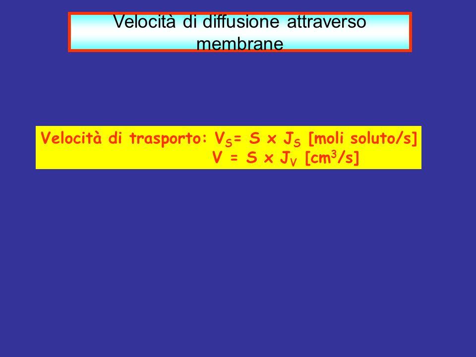 Velocità di diffusione attraverso membrane Velocità di trasporto: V S = S x J S [moli soluto/s] V = S x J V [cm 3 /s]