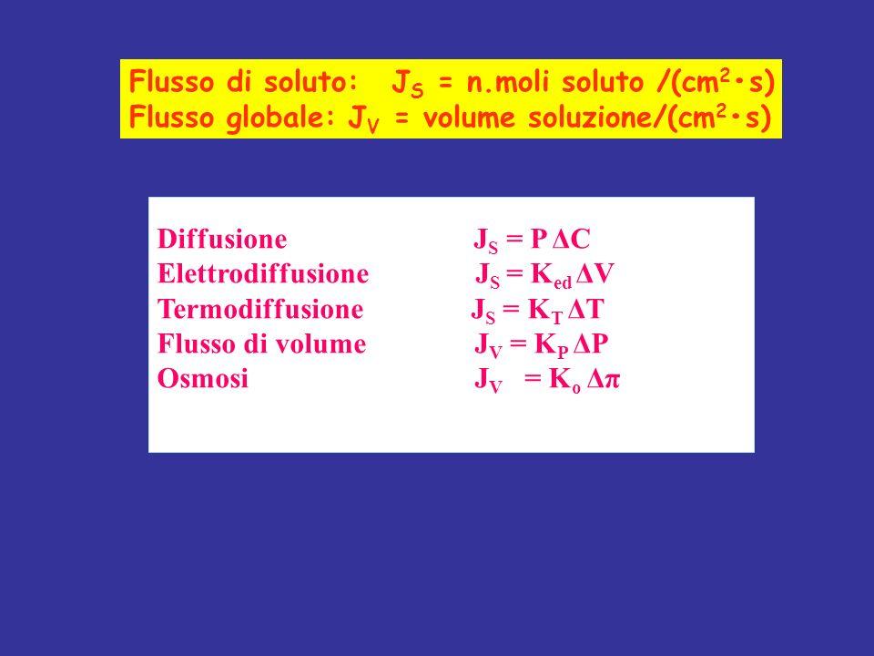 Diffusione J S = P ΔC Elettrodiffusione J S = K ed ΔV Termodiffusione J S = K T ΔT Flusso di volume J V = K P ΔP Osmosi J V = K o Δπ Flusso di soluto: