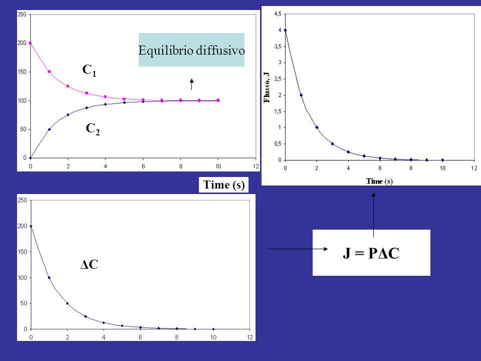 C1C1 C2C2 Time (s) ΔCΔC J = PΔC Equilibrio diffusivo