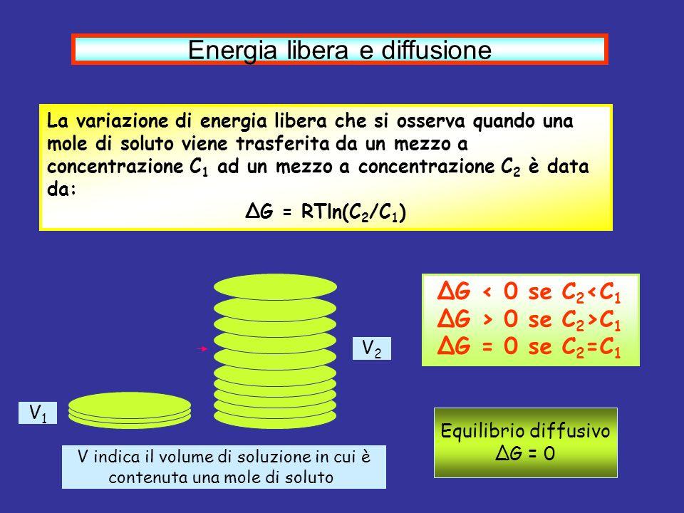 Energia libera e diffusione La variazione di energia libera che si osserva quando una mole di soluto viene trasferita da un mezzo a concentrazione C 1