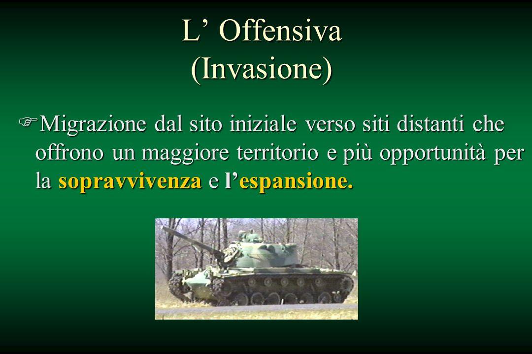 L Offensiva (Invasione) FMigrazione dal sito iniziale verso siti distanti che offrono un maggiore territorio e più opportunità per la sopravvivenza e