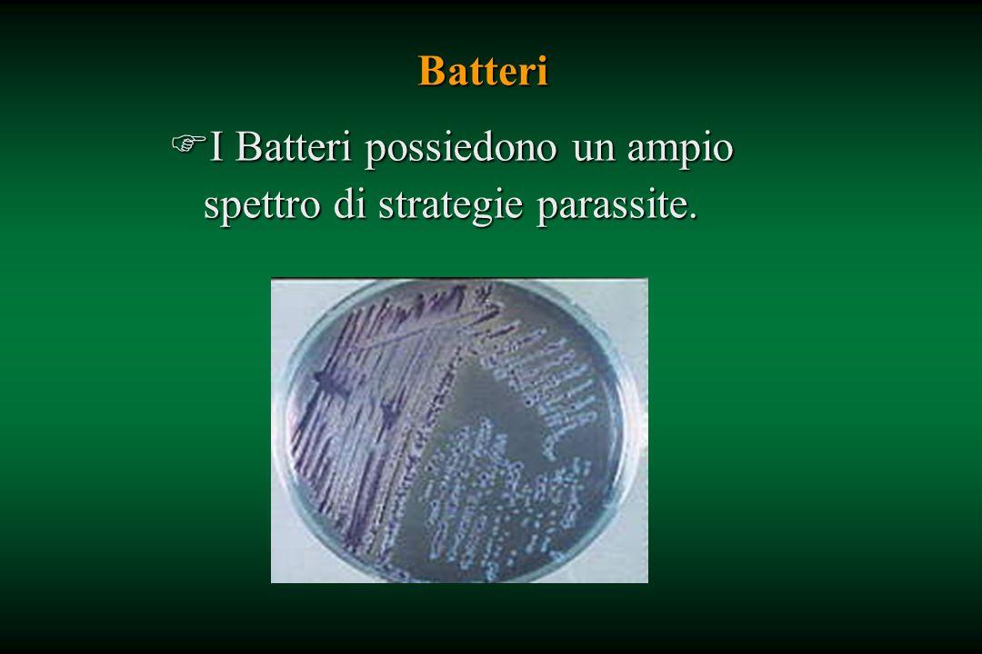 Batteri FI Batteri possiedono un ampio spettro di strategie parassite.