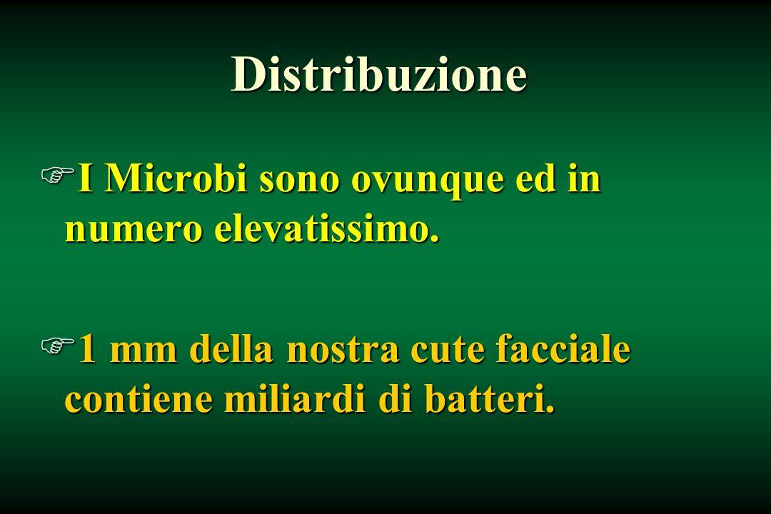 Distribuzione FI Microbi sono ovunque ed in numero elevatissimo. F1 mm della nostra cute facciale contiene miliardi di batteri.