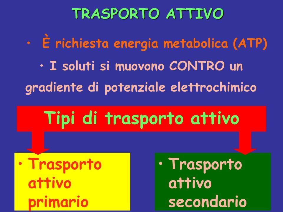TRASPORTO ATTIVO TRASPORTO ATTIVO I soluti si muovono CONTRO un gradiente di potenziale elettrochimico È richiesta energia metabolica (ATP) Tipi di tr