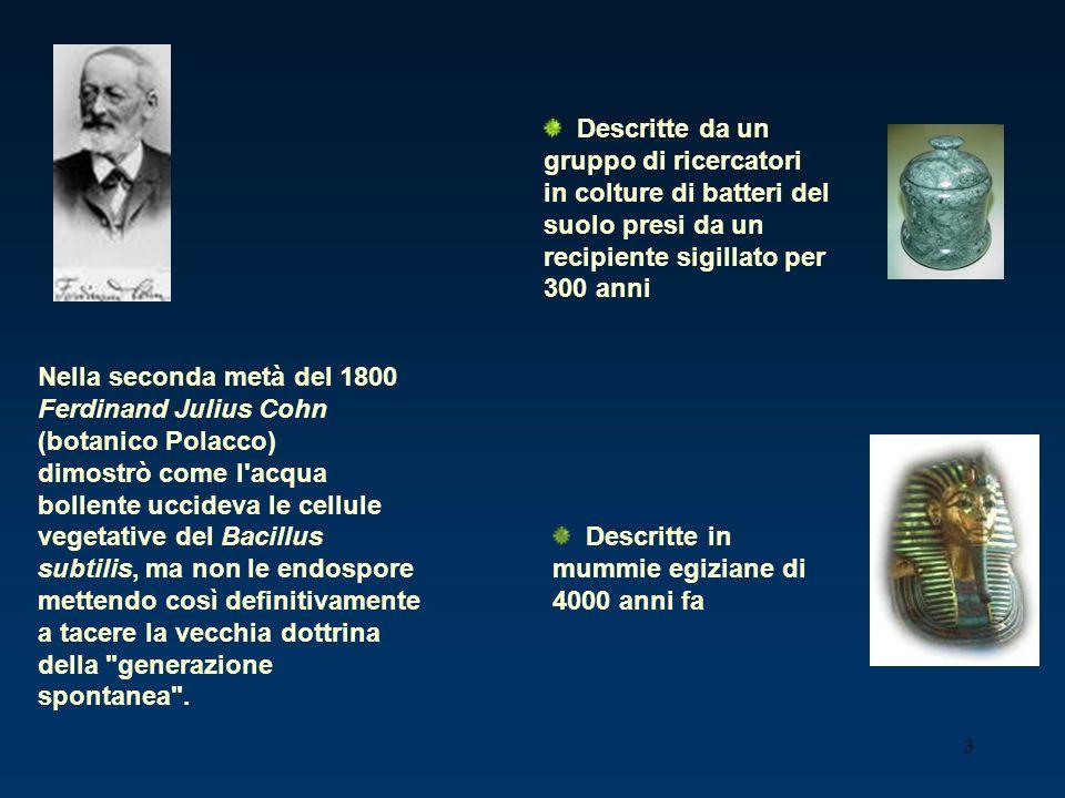 3 Nella seconda metà del 1800 Ferdinand Julius Cohn (botanico Polacco) dimostrò come l'acqua bollente uccideva le cellule vegetative del Bacillus subt
