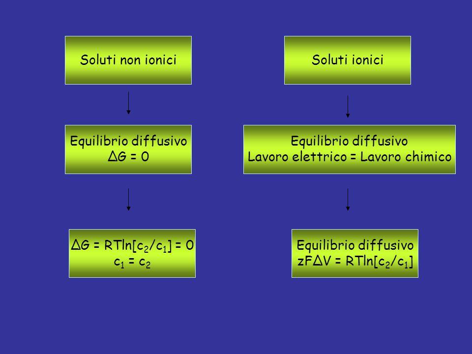 Soluti non ionici Equilibrio diffusivo ΔG = 0 ΔG = RTln[c 2 /c 1 ] = 0 c 1 = c 2 Soluti ionici Equilibrio diffusivo Lavoro elettrico = Lavoro chimico Equilibrio diffusivo zFΔV = RTln[c 2 /c 1 ]