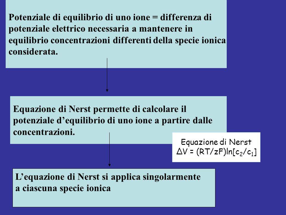Potenziale di equilibrio di uno ione = differenza di potenziale elettrico necessaria a mantenere in equilibrio concentrazioni differenti della specie ionica considerata.