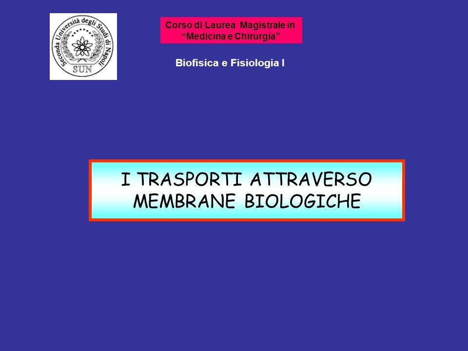 Movimenti di piccoli soluti attraverso le membrane Trasporto mediato da carrier Trasporto semplice 2 categorie generali
