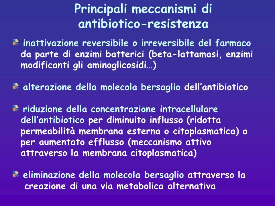inattivazione reversibile o irreversibile del farmaco da parte di enzimi batterici (beta-lattamasi, enzimi modificanti gli aminoglicosidi…) alterazione della molecola bersaglio dellantibiotico riduzione della concentrazione intracellulare dellantibiotico per diminuito influsso (ridotta permeabilità membrana esterna o citoplasmatica) o per aumentato efflusso (meccanismo attivo attraverso la membrana citoplasmatica) eliminazione della molecola bersaglio attraverso la creazione di una via metabolica alternativa Principali meccanismi di antibiotico-resistenza