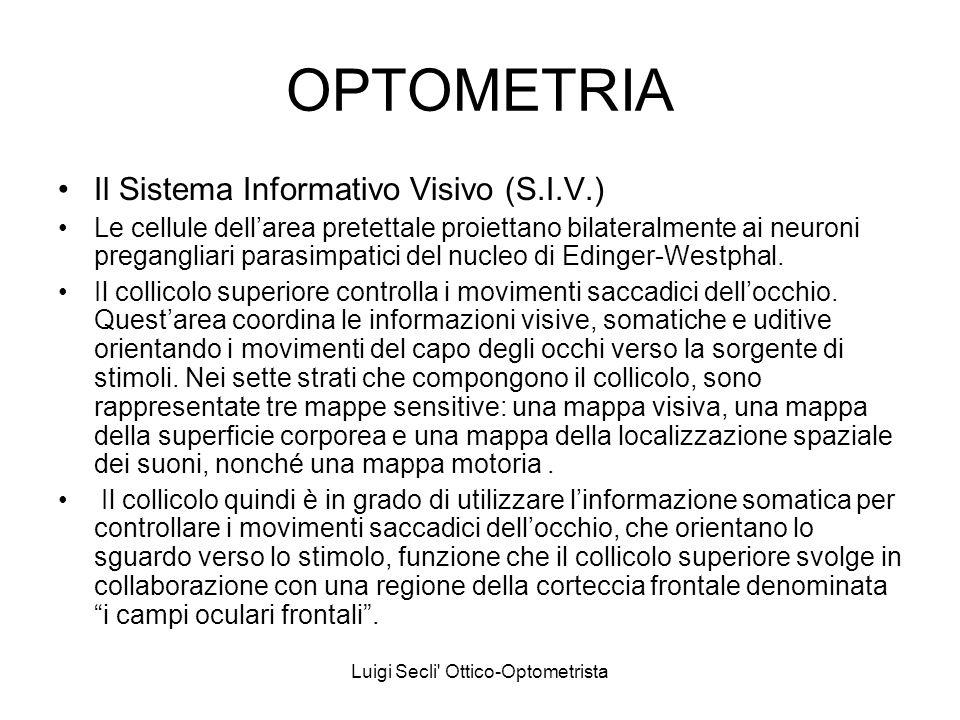Luigi Secli' Ottico-Optometrista OPTOMETRIA Il Sistema Informativo Visivo (S.I.V.) Le cellule dellarea pretettale proiettano bilateralmente ai neuroni
