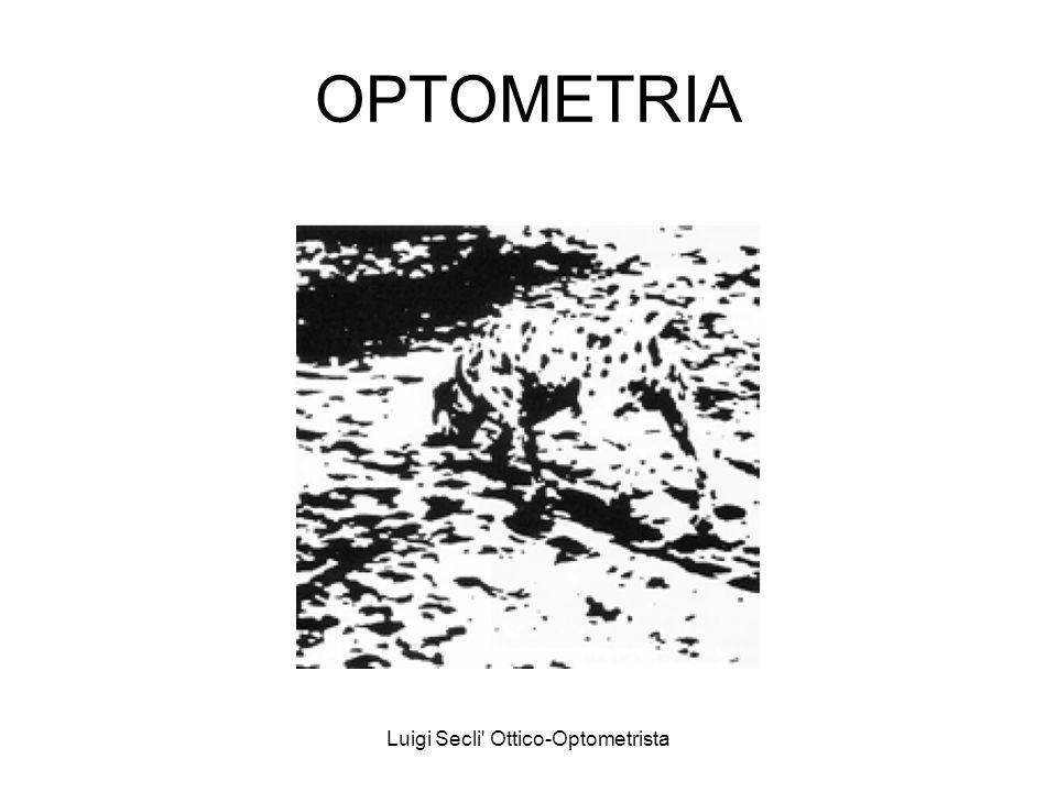 Luigi Secli Ottico-Optometrista OPTOMETRIA Il Sistema Informativo Visivo (S.I.V.) Lassorbimento della luce e la sua trasformazione in segnali elettrici è opera dei fotorecettori.