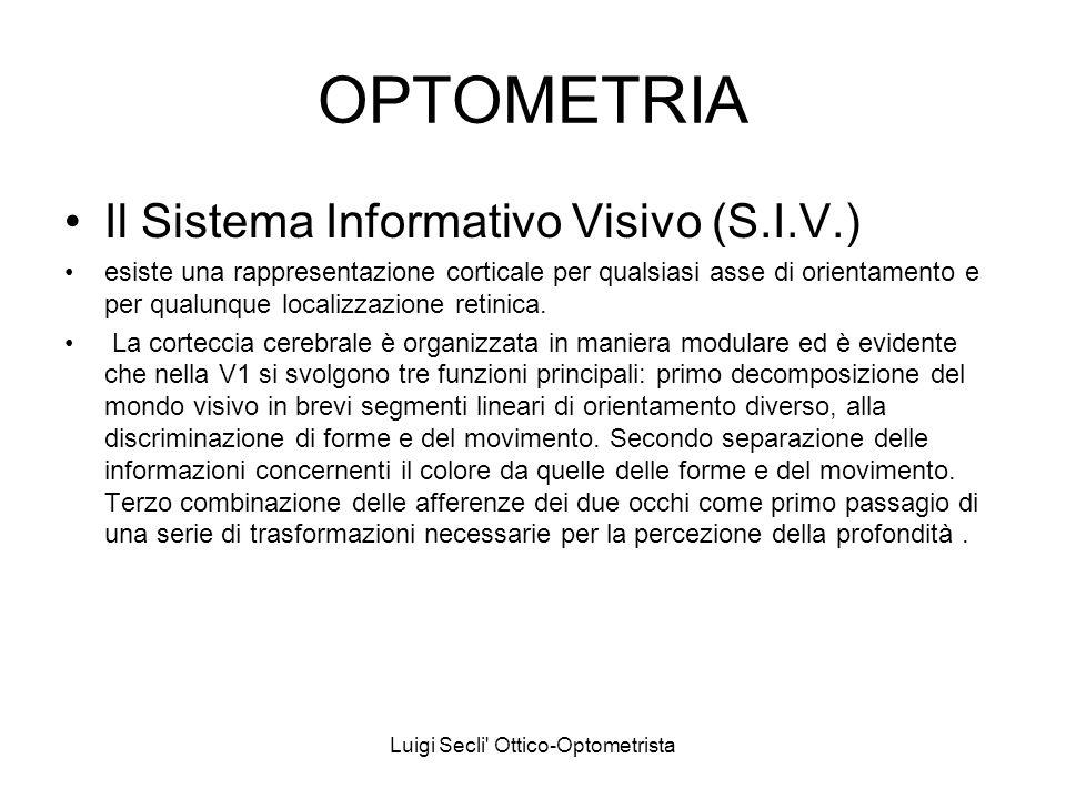 Luigi Secli' Ottico-Optometrista OPTOMETRIA Il Sistema Informativo Visivo (S.I.V.) esiste una rappresentazione corticale per qualsiasi asse di orienta