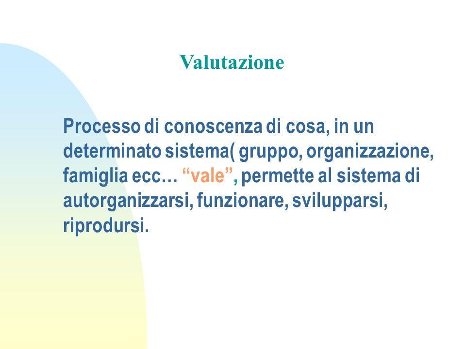 Processo di conoscenza di cosa, in un determinato sistema( gruppo, organizzazione, famiglia ecc… vale, permette al sistema di autorganizzarsi, funzion
