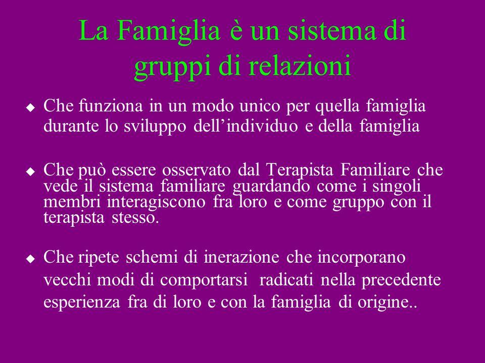 La Famiglia è un sistema di gruppi di relazioni Che funziona in un modo unico per quella famiglia durante lo sviluppo dellindividuo e della famiglia C