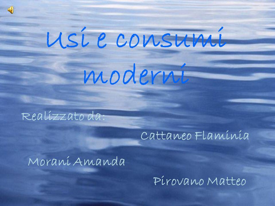 Usi e consumi moderni Realizzato da: Cattaneo Flaminia Morani Amanda Pirovano Matteo