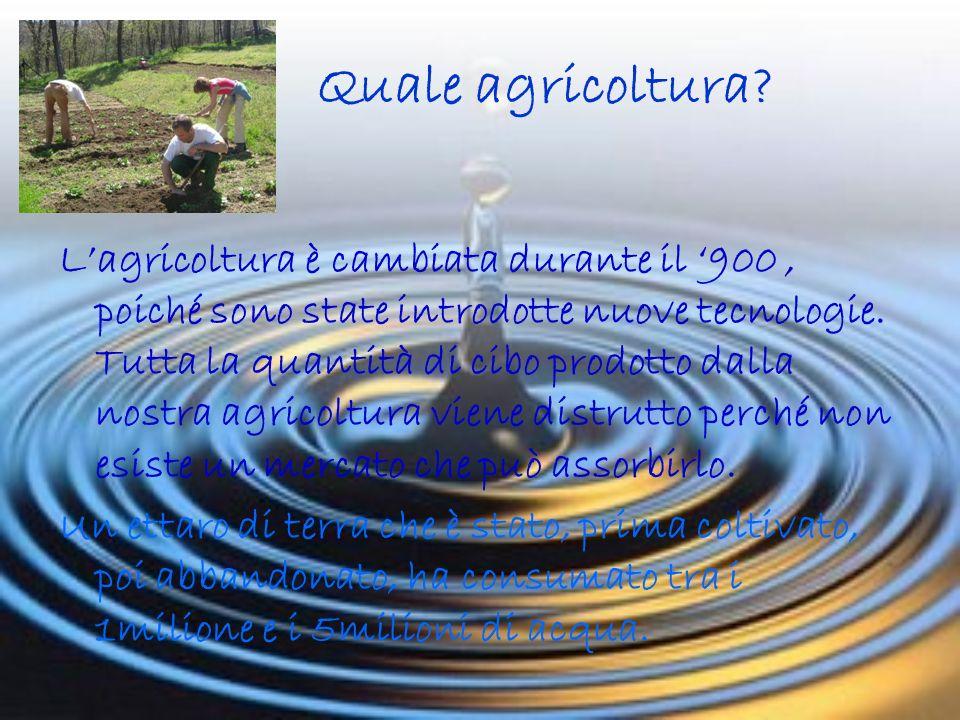 Quale agricoltura.